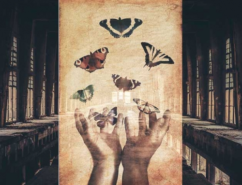 Psykoosioravanpyörästä perhoseksi
