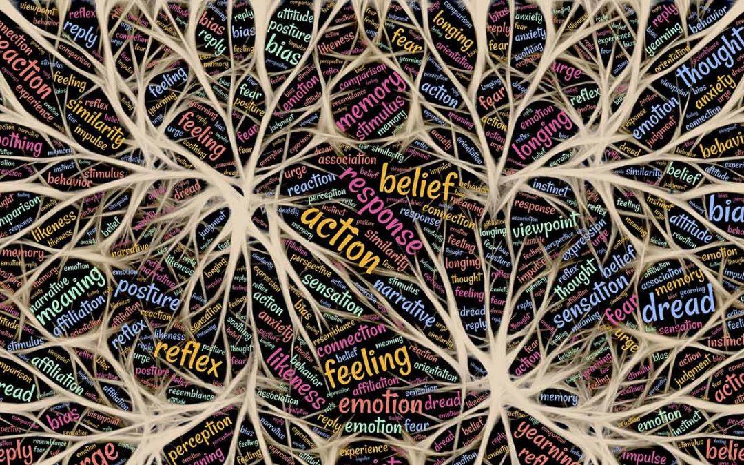 Itsehavainnoinnin ja anteeksi pyytämisen merkitys